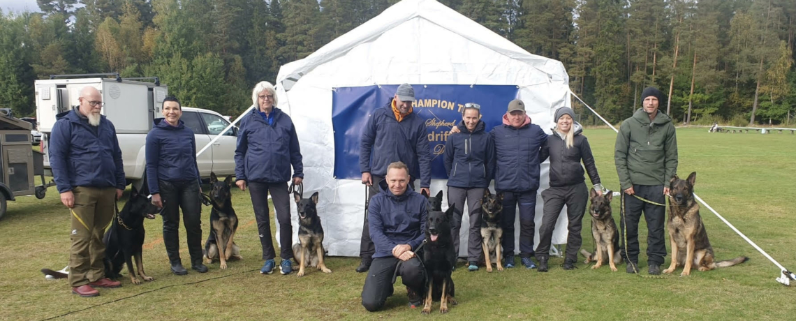 Imzedrifts, The breeder with the most qualified dogs at the Swedish GSD Championship 2021 !!